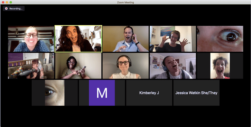 A screenshot of the Accessing the Arts team and facilitators on a Zoom call